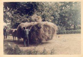 aout-1969-duras-chez-le-docteur-chazel