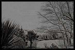 hiver01-3_nbfroid1dxo-copier