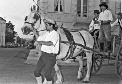 81pays-de-duras-60-70