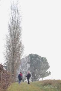 2017 12 03 Randonneurs du Pays de DURAS à BIRAC SUR TREC (11)_DxO_DxO 1