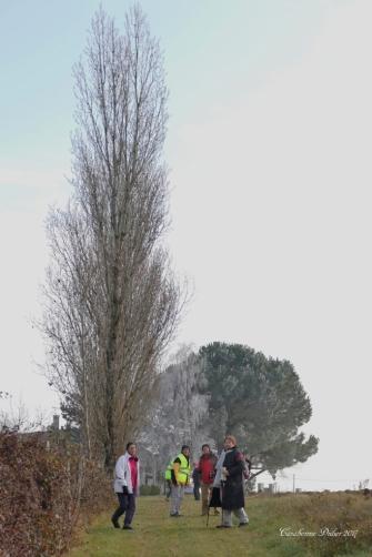 2017 12 03 Randonneurs du Pays de DURAS à BIRAC SUR TREC (12)_DxO_DxO 1