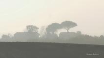 2017 12 03 Randonneurs du Pays de DURAS à BIRAC SUR TREC (16)_DxO_DxO 1