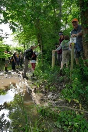 2018 06 14 Les Randonneurs du Pays de DURAS à SAINT ANDRE & APPELLES (5) JPG